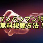 ワンパンマン1期アニメフル動画の無料視聴方法!パンドラで再放送は見れる?