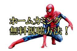 スパイダーマン ホームカミング 無料動画